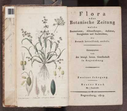 Flora oder Botanische Zeitung, frontispiece and title page